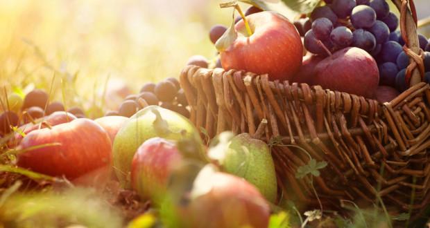 Fruchtzuckermalabsorption - Krank durch Fruchtzucker