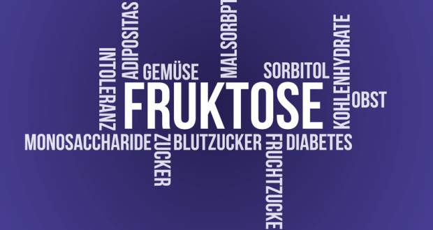 Fruktose & Fruchtzucker Wordcloud