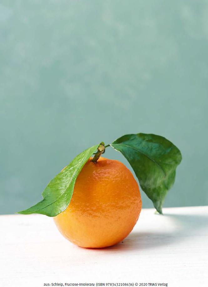 Ratgeber Fructoseintoleranz Seite neu 08